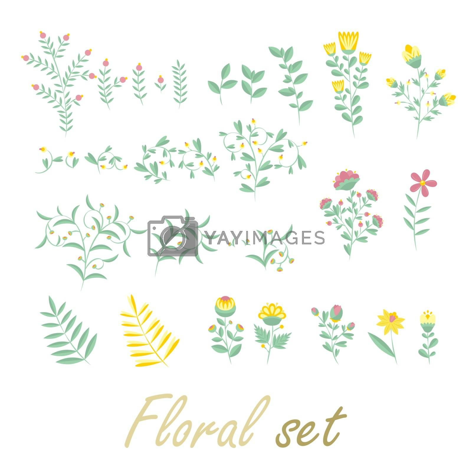 Colorful floral collection with flowers and leaves. Plant elements of summer herbs and flowers