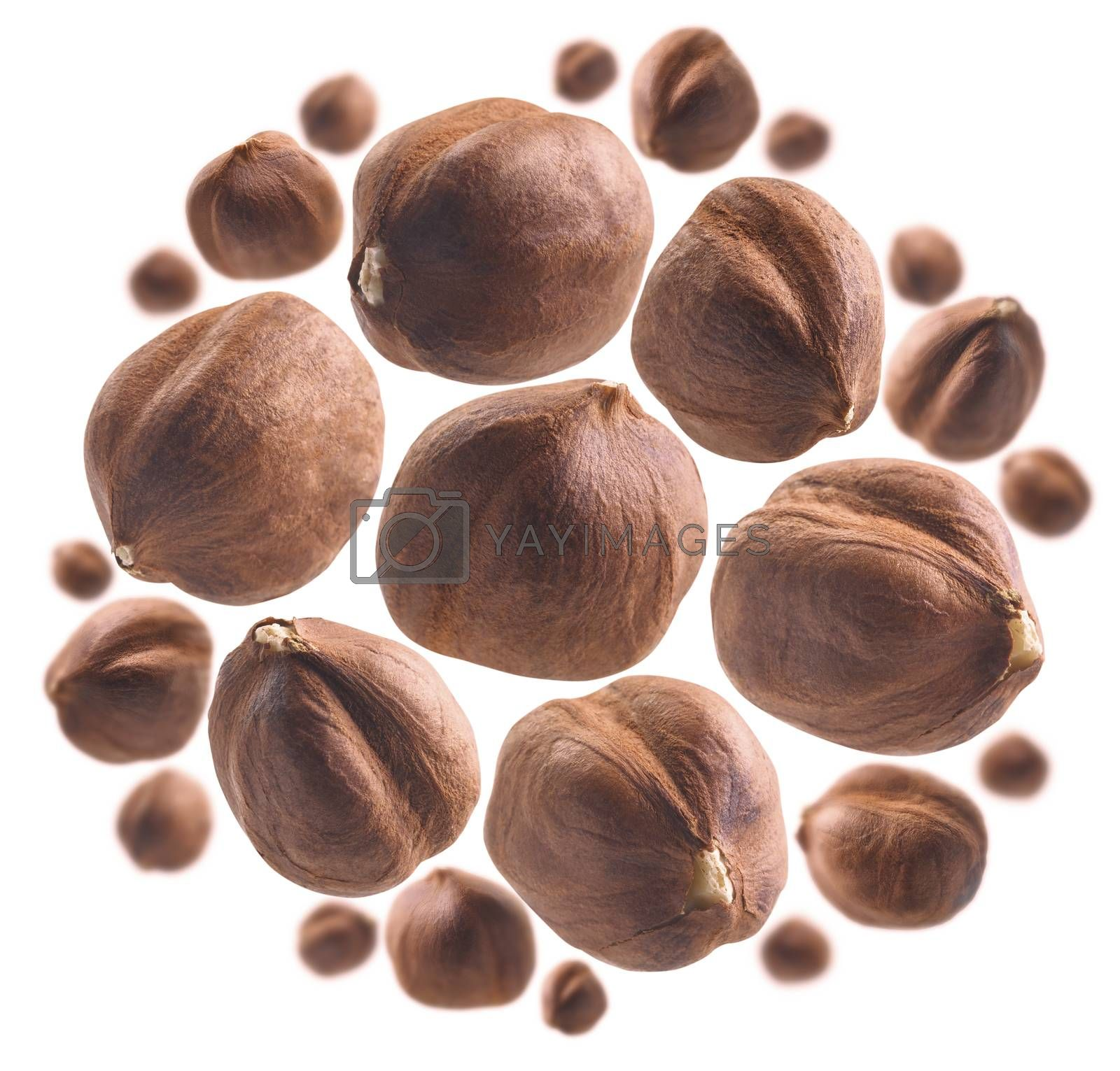 Peeled hazelnut levitates on a white background.