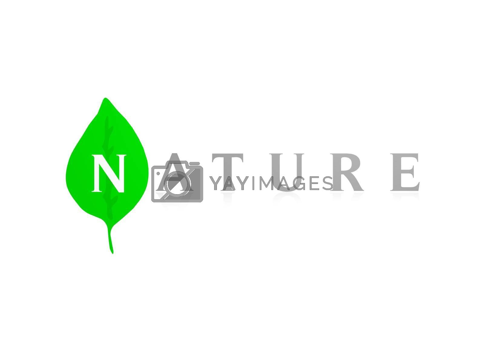 organic word with green white leaves on white background - 3d rendering