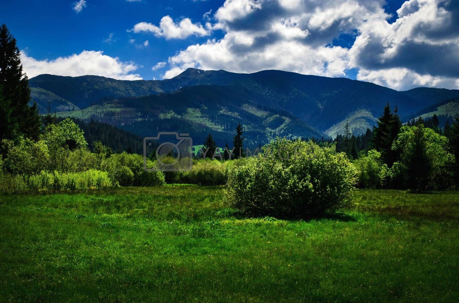 landscape nature background summer mountainous countryside with hills