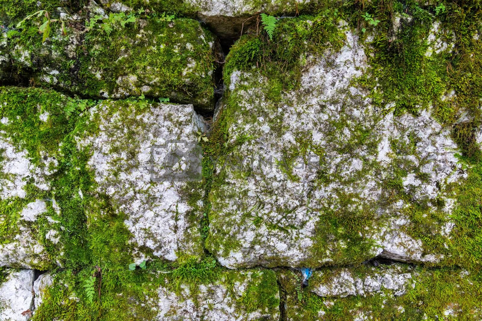 Background wall of arranged rocks in layers covered by green moss.