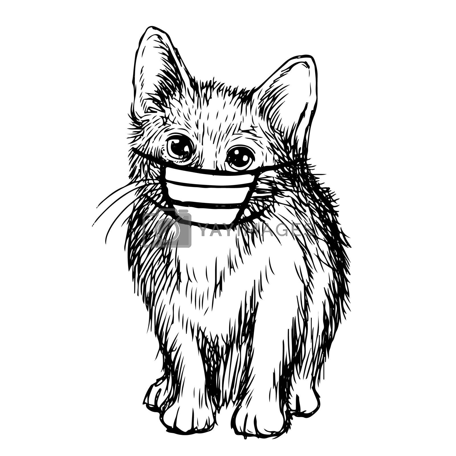 illustration of cat with mask hand drawn isolated on white background