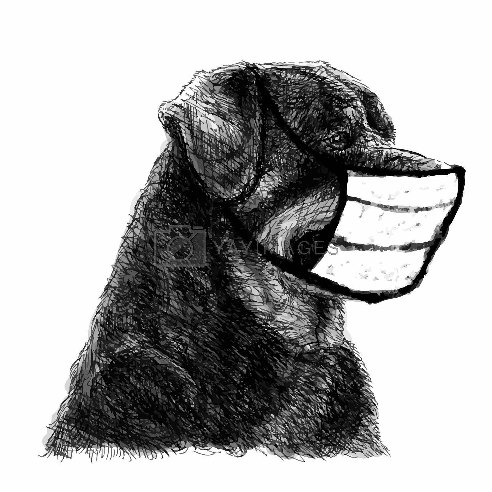 freehand sketch illustration of Rottweiler dog with mask doodle hand drawn