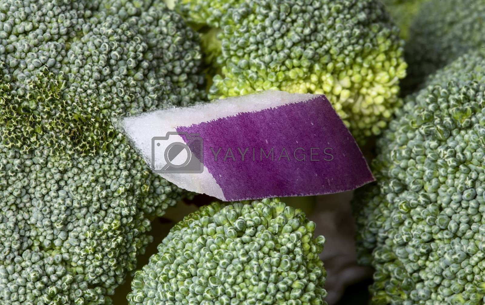 Close Up Vegetables broccoli and colliflower and onion red