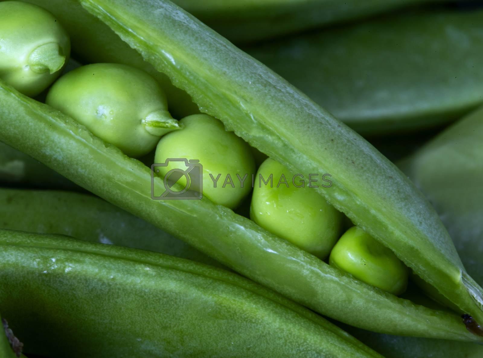 Close Up Peas pod green vegetable macro angle