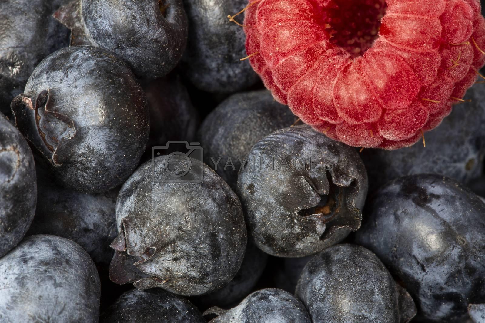 Macro Close Up Fruit Rasberry and blueberry