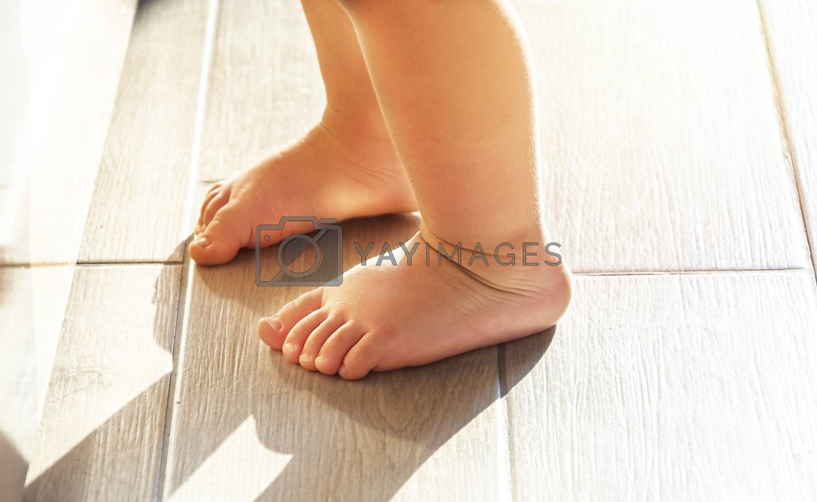 feet of a toddler learning to walk. Natural light. Interior day