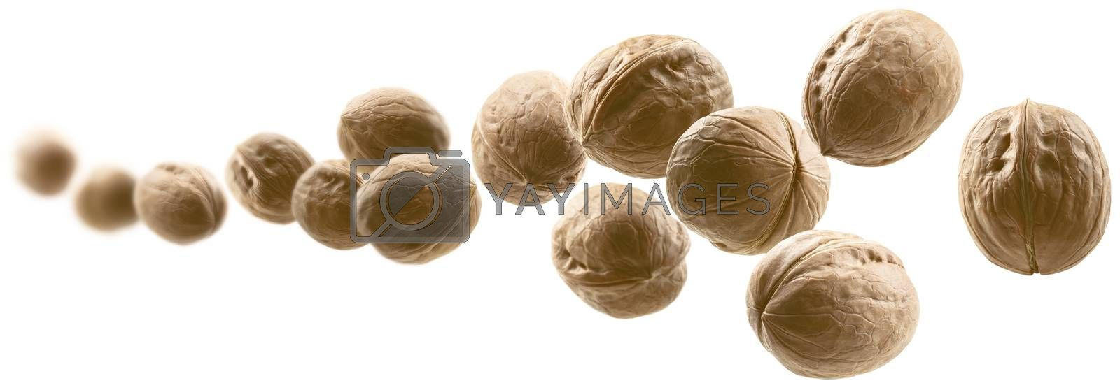 Whole walnuts levitate on a white background.