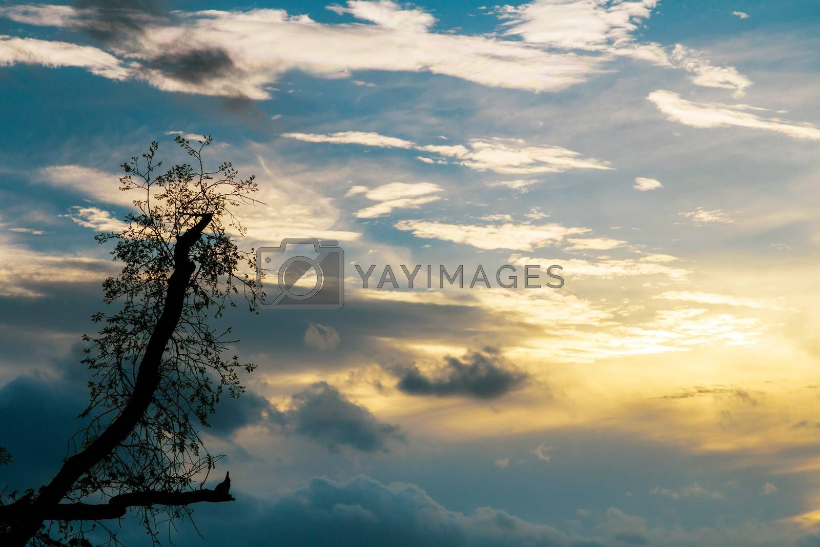 Beautiful aerial view dramatic sunset sky clouds with light