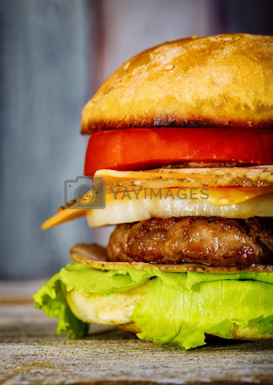 A delicious burger meat cutlets with cheese, lettuce