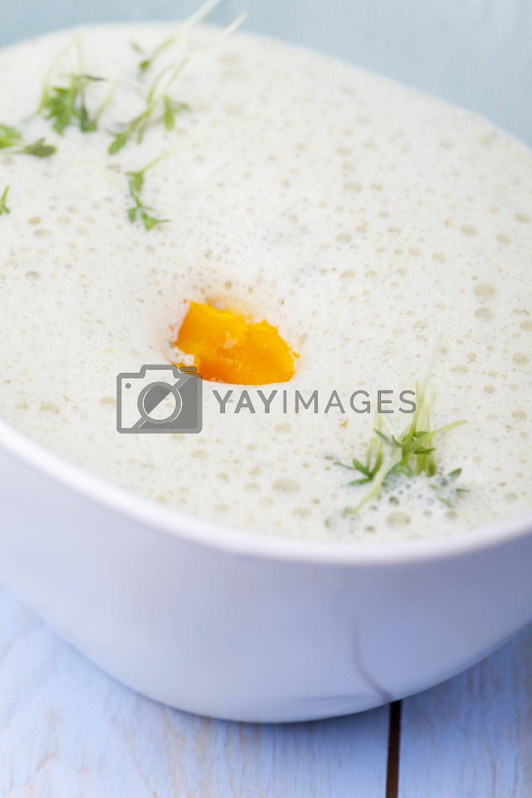 fresh chervil soup in a bowl on wood by bernjuer