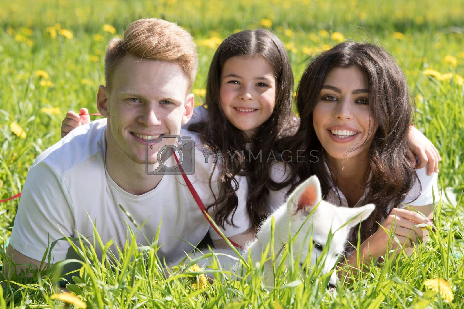 Happy family of parents and daughter laying on grass in park with pet husky puppy dog