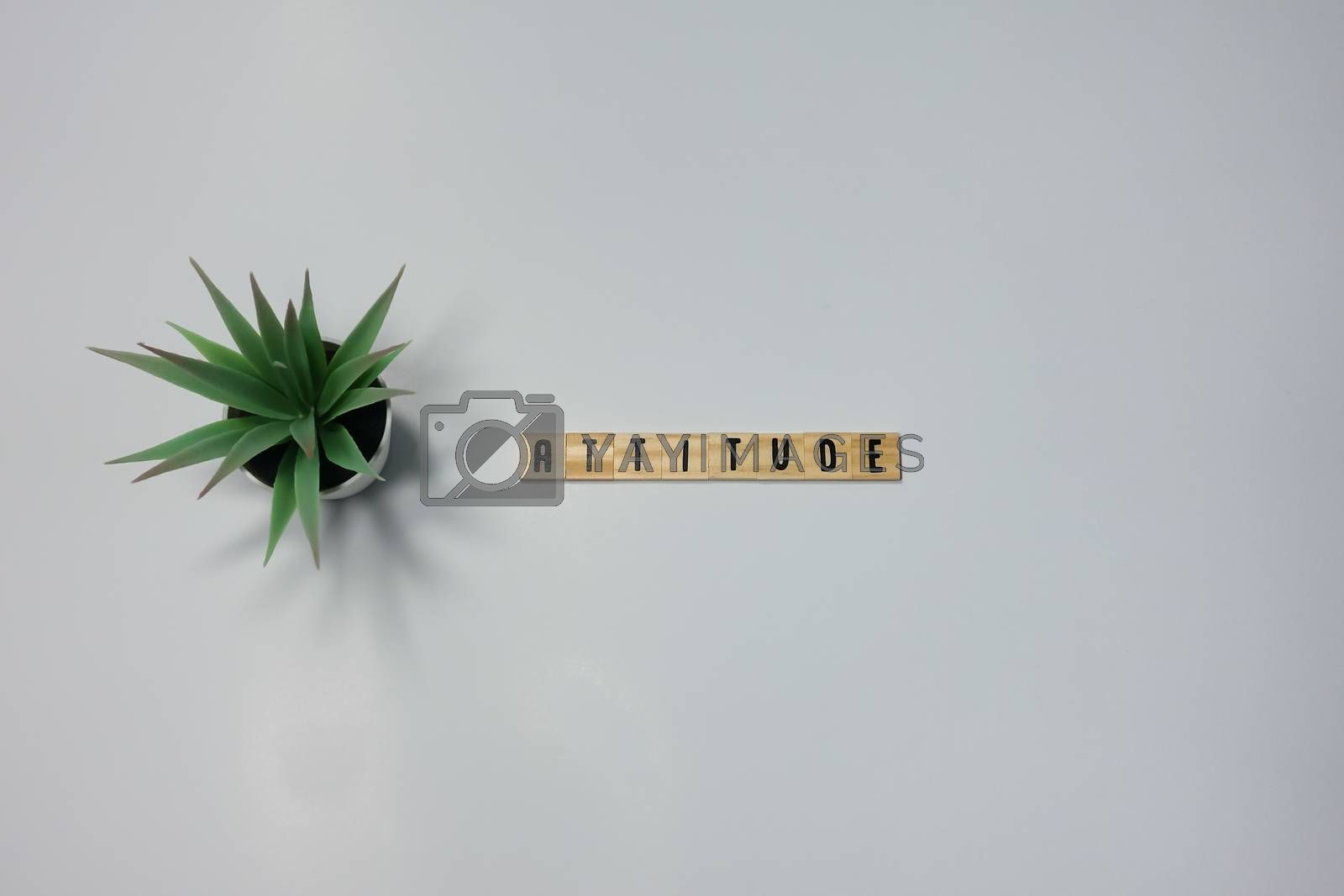 The word Attitude written in wooden letter tiles on a white background.  Concept attitude in business, life and happiness.