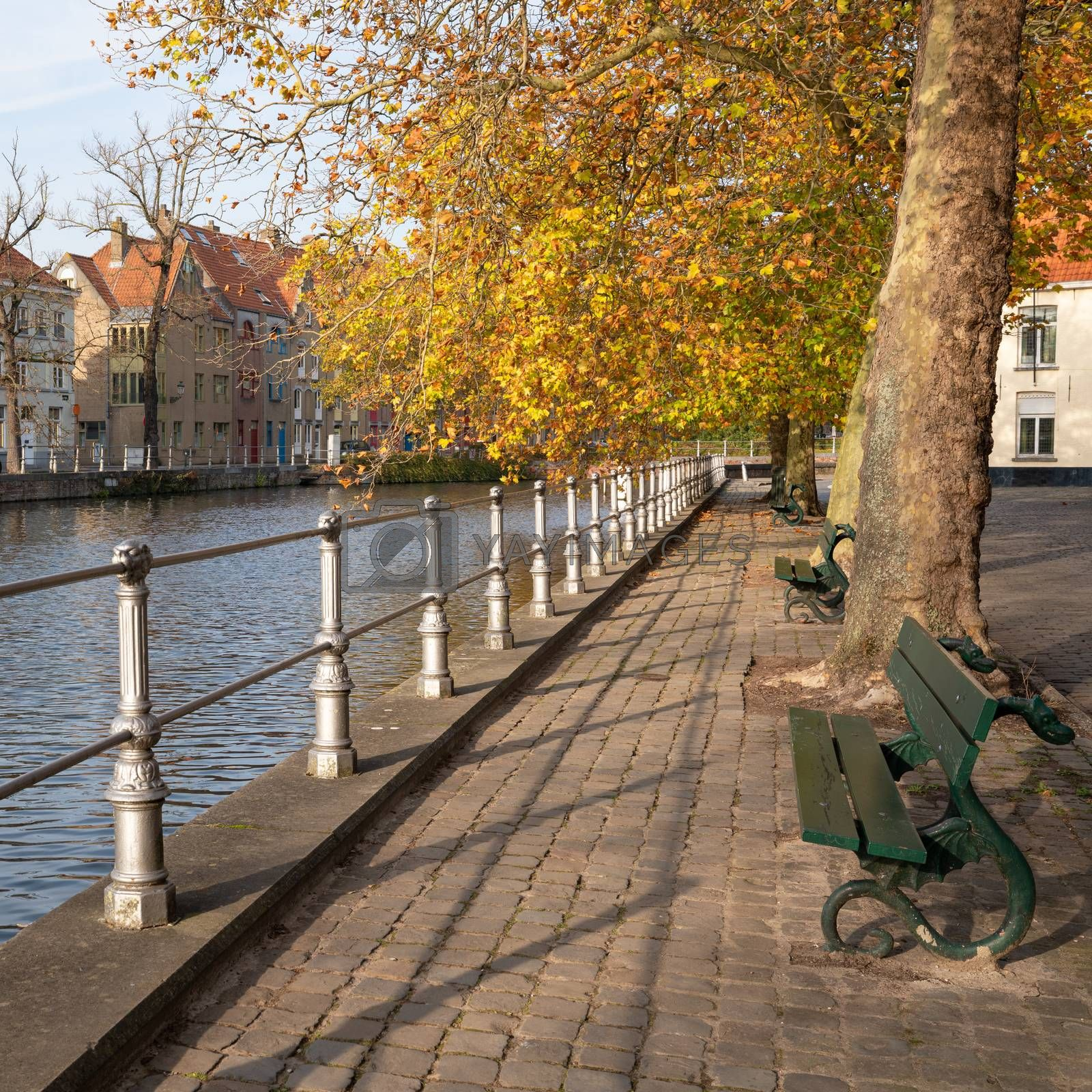 Benches close to the canals of Bruges under colorful trees, Belgium