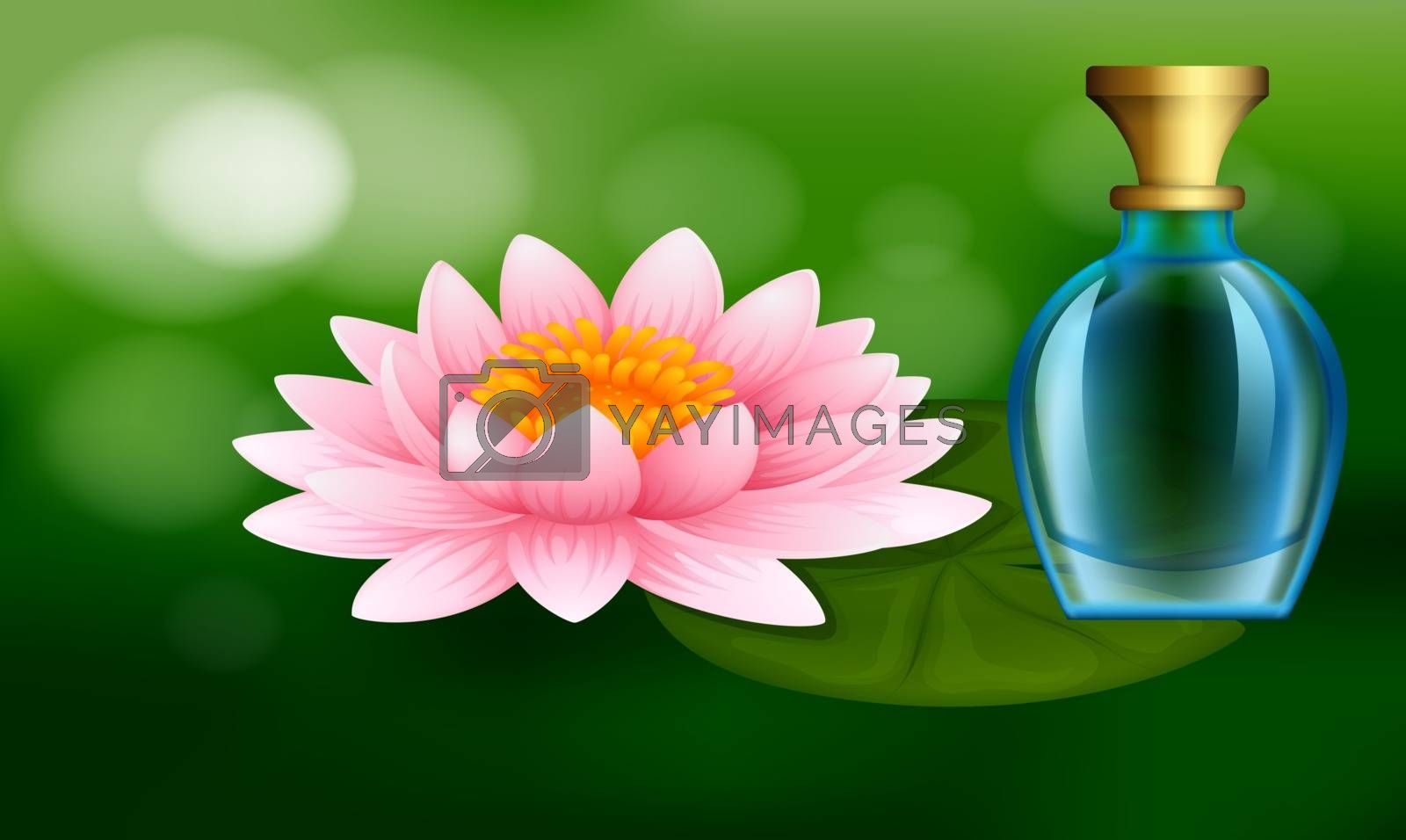 mock up illustration of female perfume from lotus flower extract on abstract background