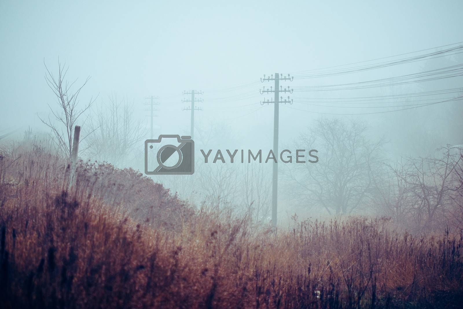 Old telegraph and telephon wired line alongside railroad embankment in foggy day