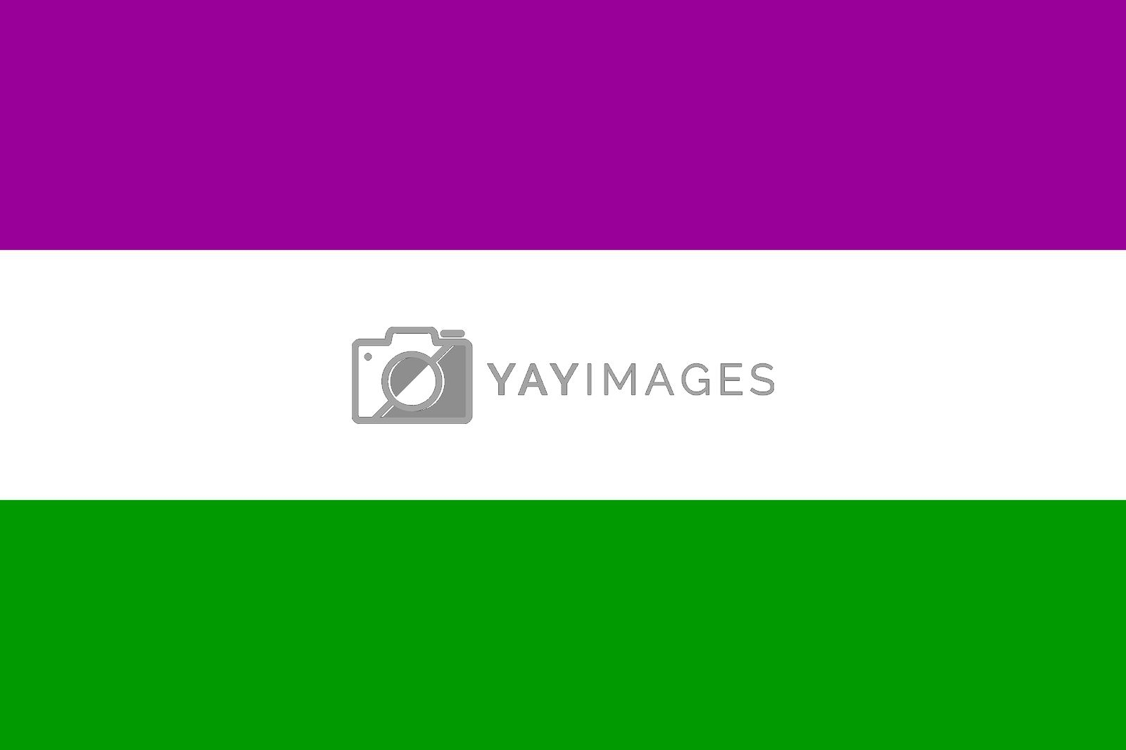 united states of america Suffragette flag hisorical symbol