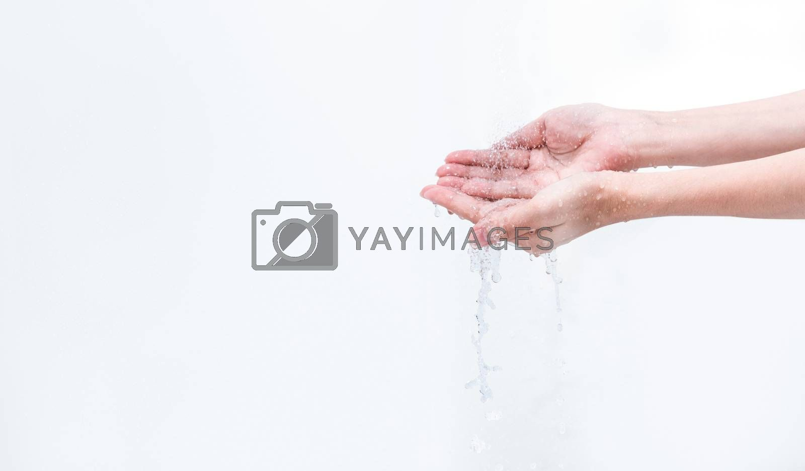Woman washing hand with water isolated on white background. Good personal hygiene concept. First step to clean dirty hands for prevent flu and coronavirus. Adult woman hand soak and wet with water.