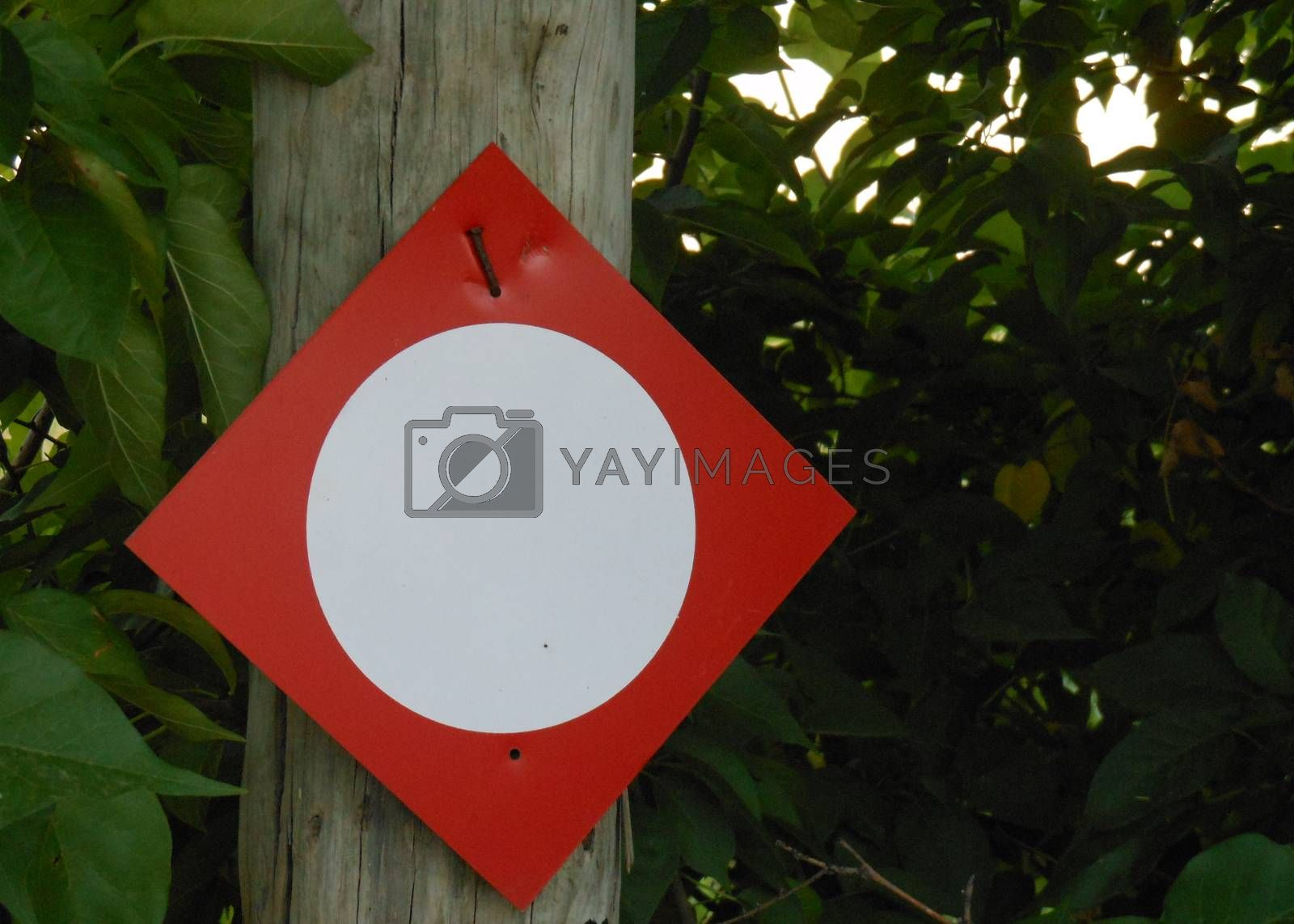 Small white circle sign on red background placed on a tree