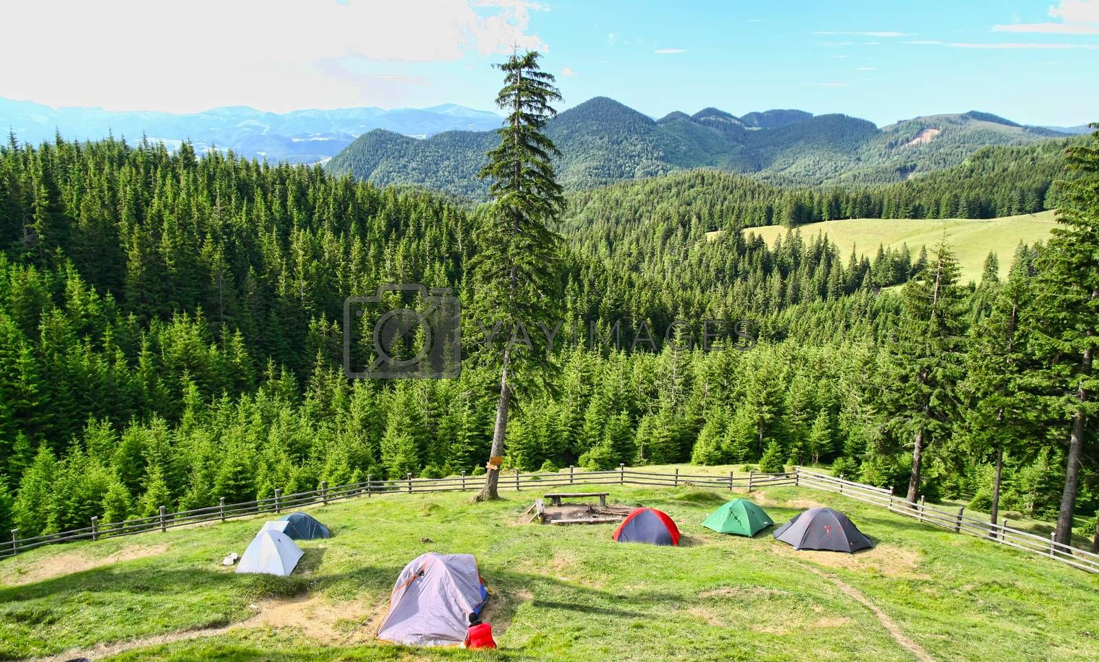 Forest camping in the mountains. Beautiful landscape in front of tents