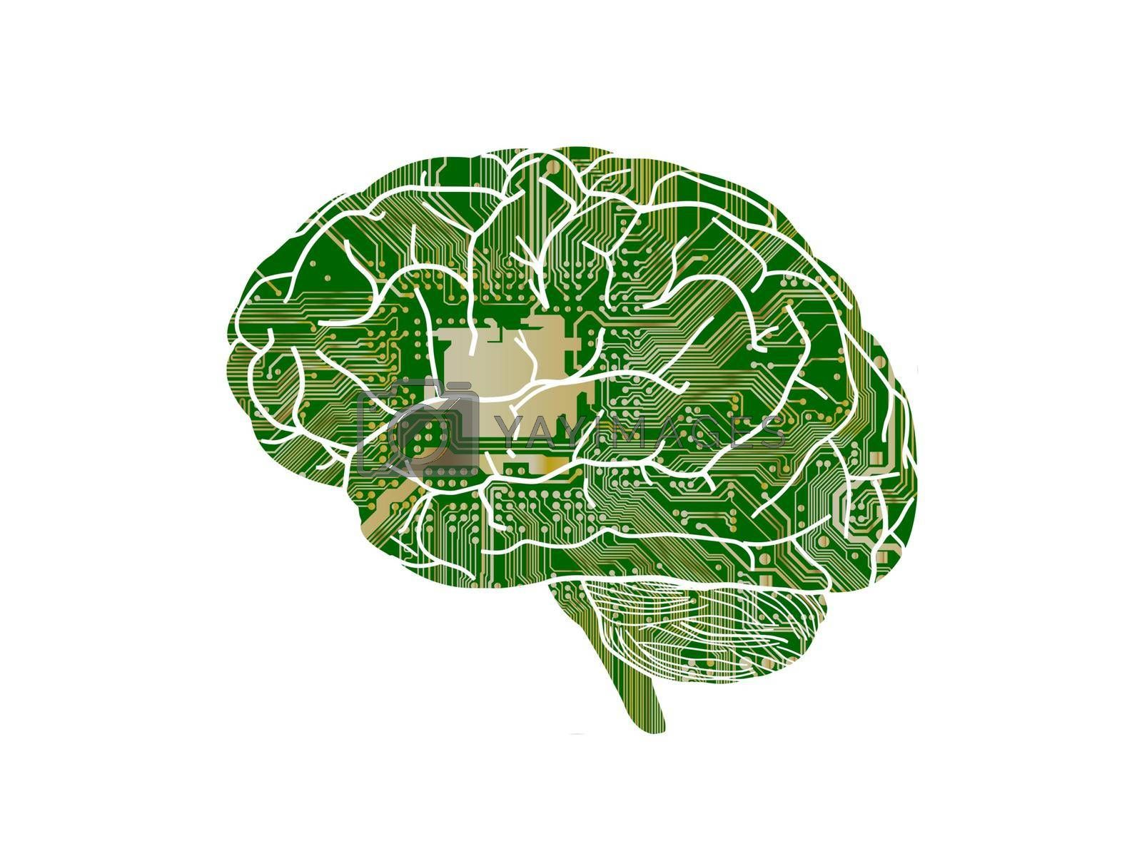 several questions about green the brain on white background - 3d rendering