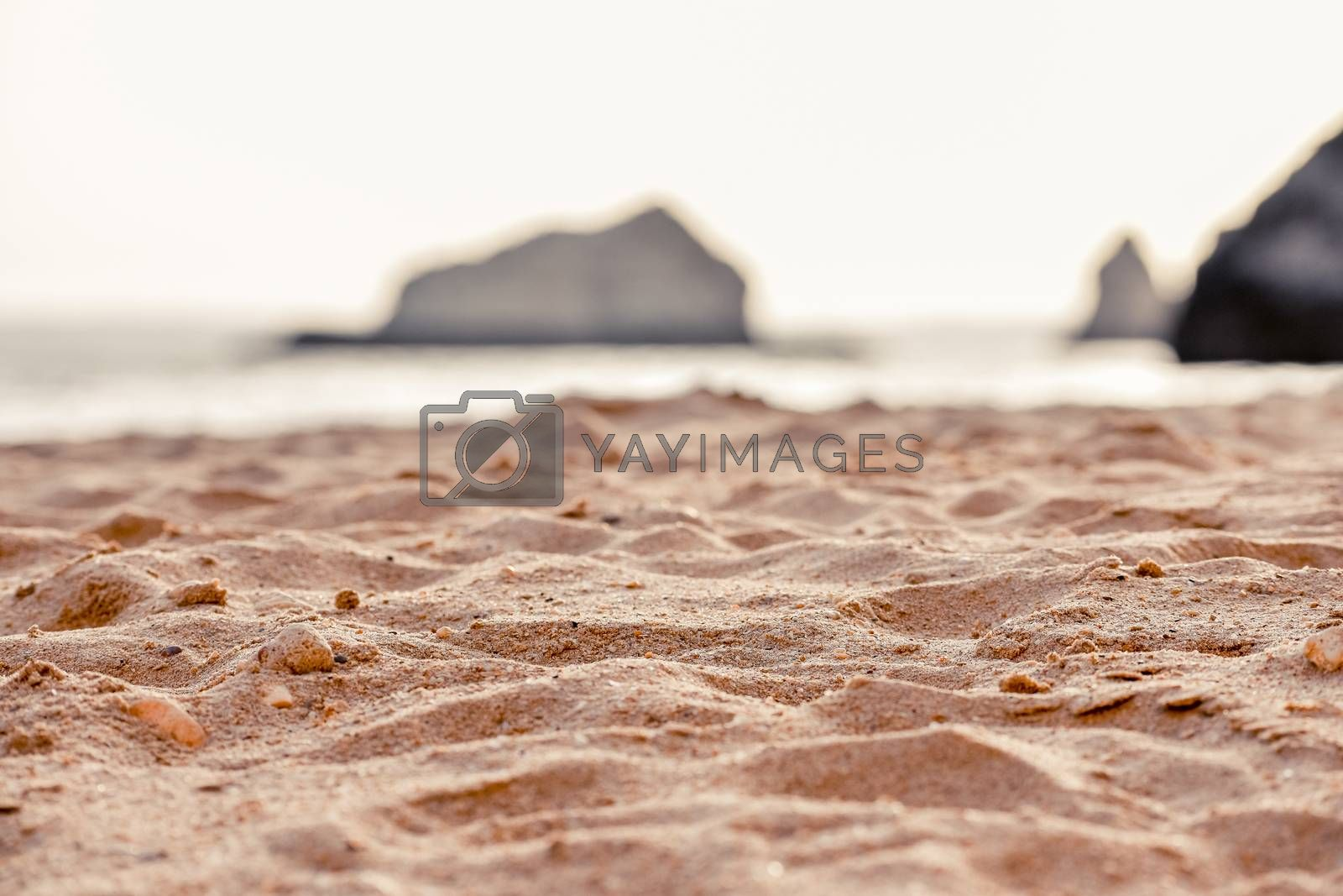 DEtail of sand of Empty beach between cliffs. Uncrowded travel concept. Algarve, Portugal