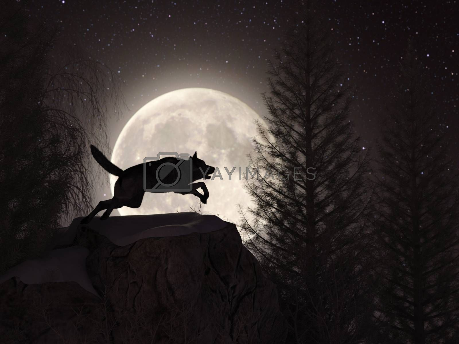 Silhouette of a wolf during the full moon in the forest at the winter - 3d rendering