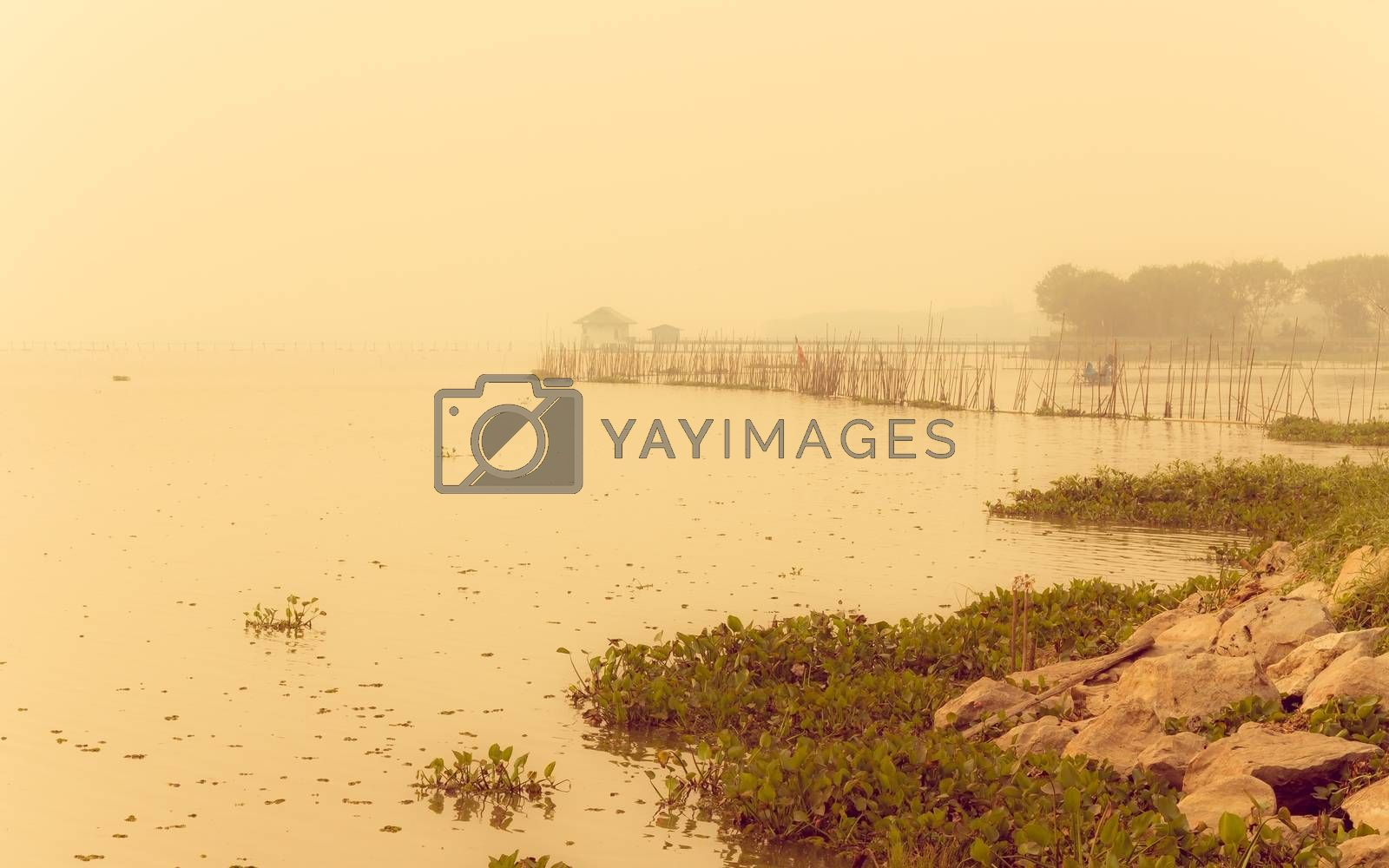 landscape with lake and fog in the morning, vintage style