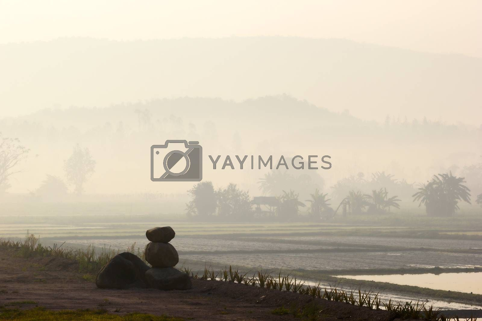 landscape of countryside in Thailand with mist in the early morning before sunrise with three rocks on the foreground. HDR.