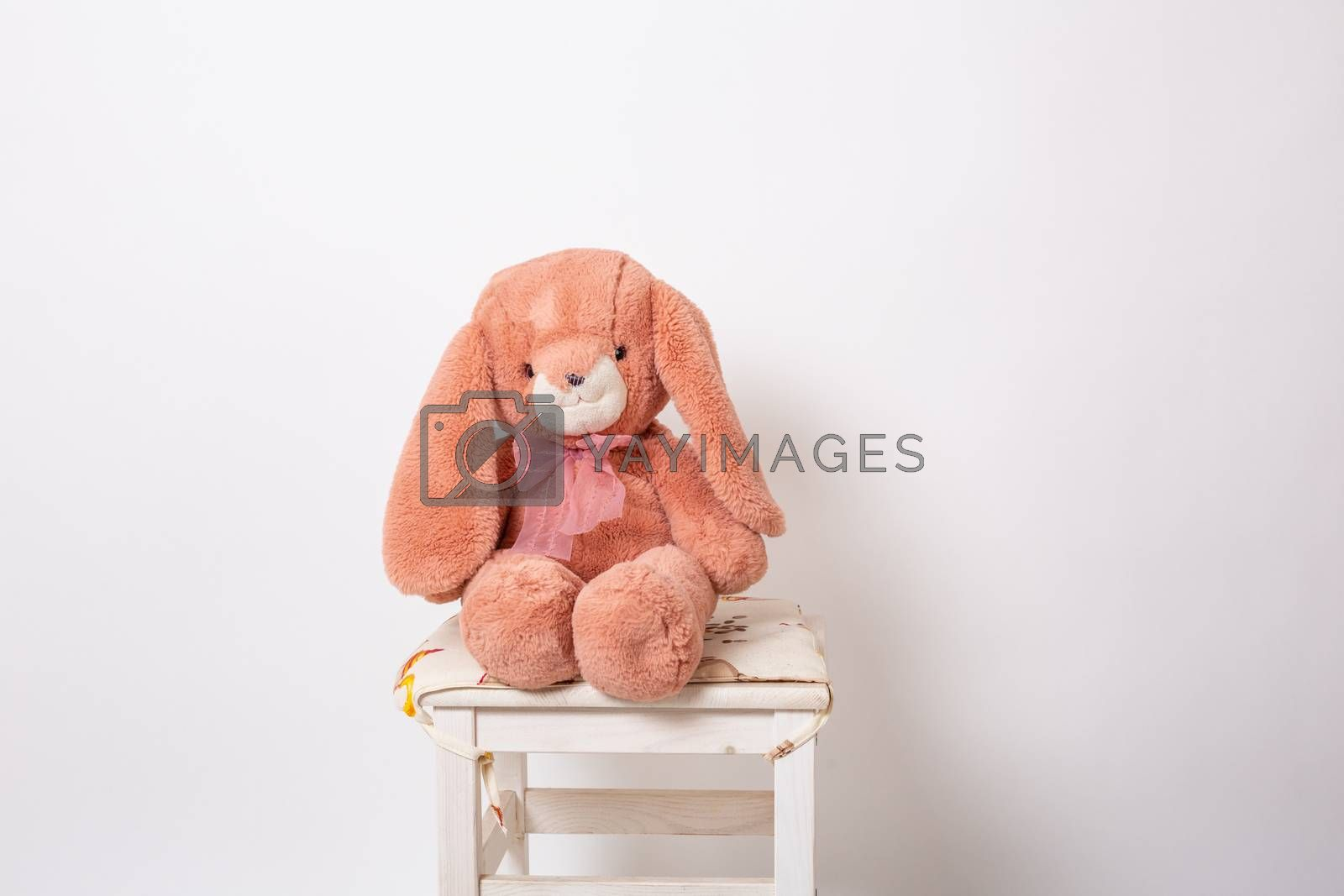 Pink rabbit plush doll sitting on a stool on white background. Easter Bunny. Easter Hare. by Vassiliy