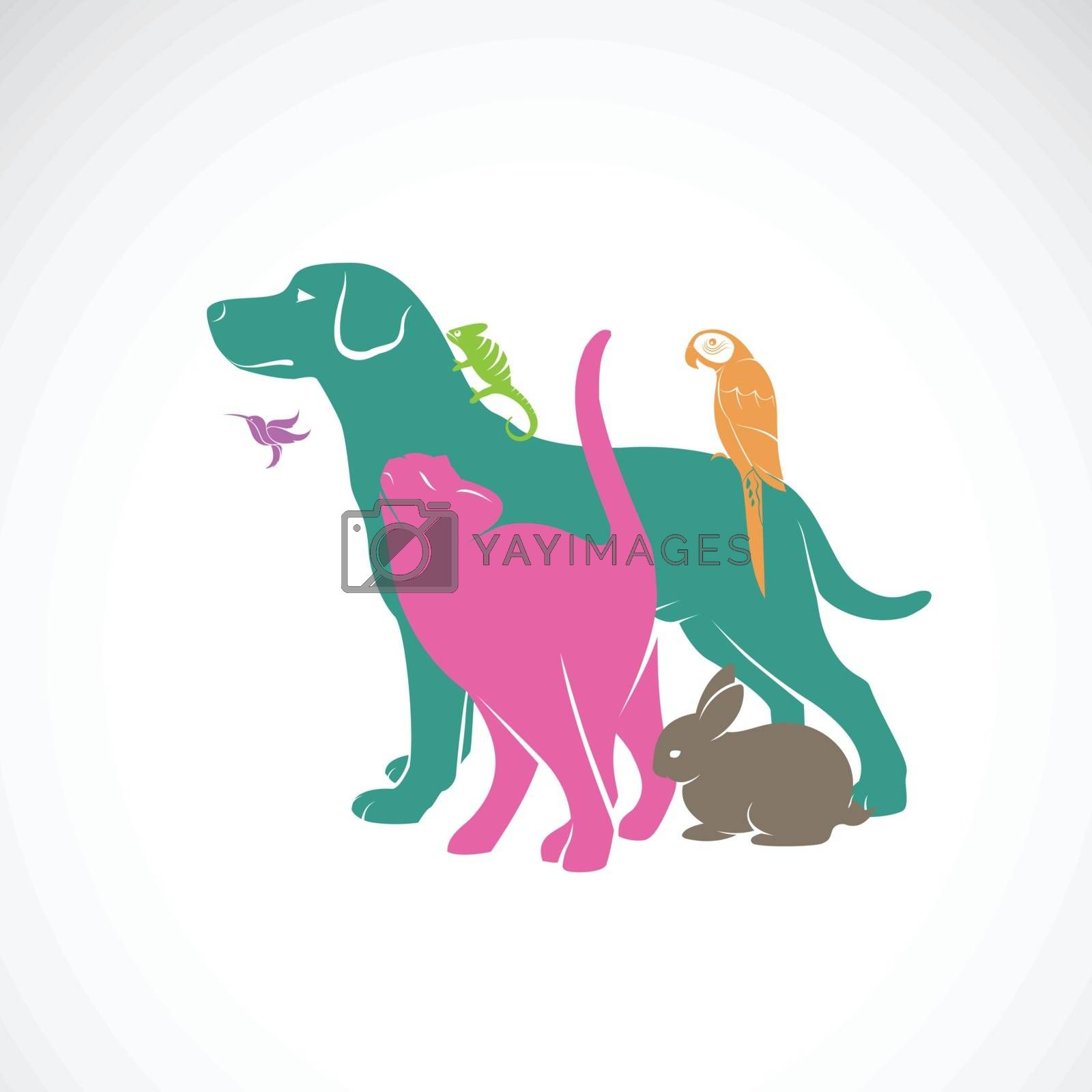 Vector group of pets - Dog, Cat, Parrot, Chameleon, Rabbit, Hummingbird isolated on white background., Animals set. Vector pets for your design. Easy editable layered vector illustration.