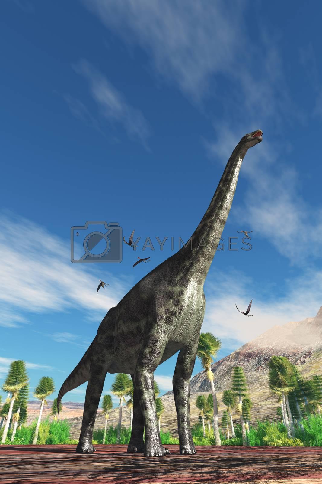 Cetiosaurus herbivorous dinosaur is surrounded by Dorygnathus Pterosaur birds during the Jurassic Period.