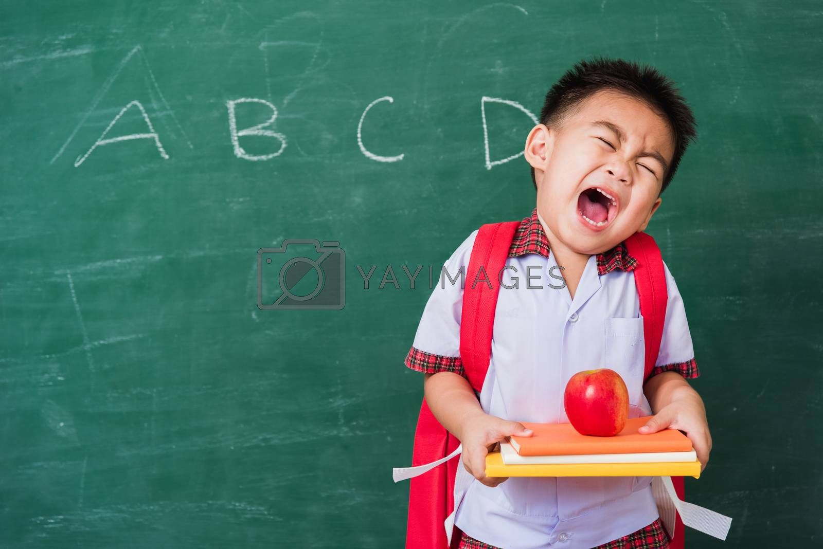 Back to School. Happy Asian funny cute little child boy from kindergarten in student uniform with school bag holding red apple on books smile on green school blackboard, First time to school education
