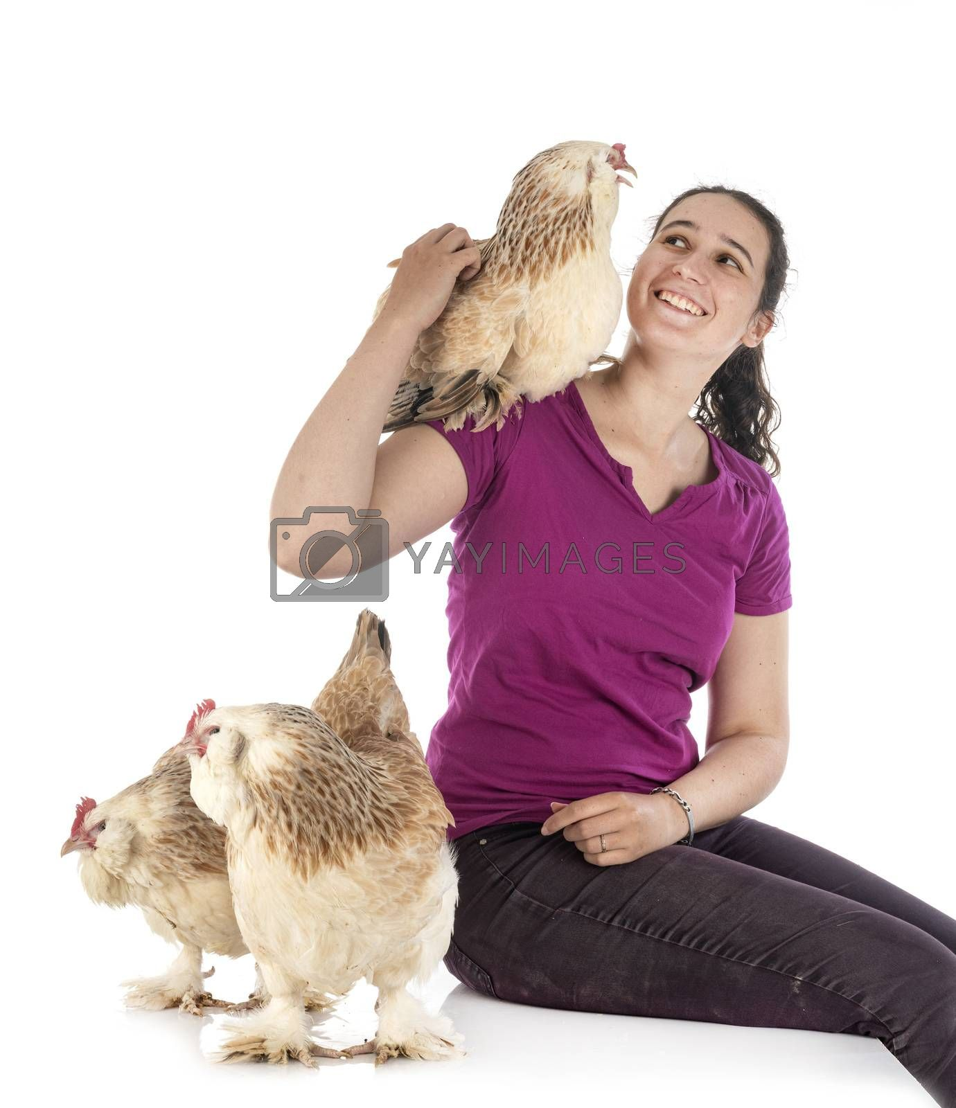 Faverolles chicken and woman in front of white background