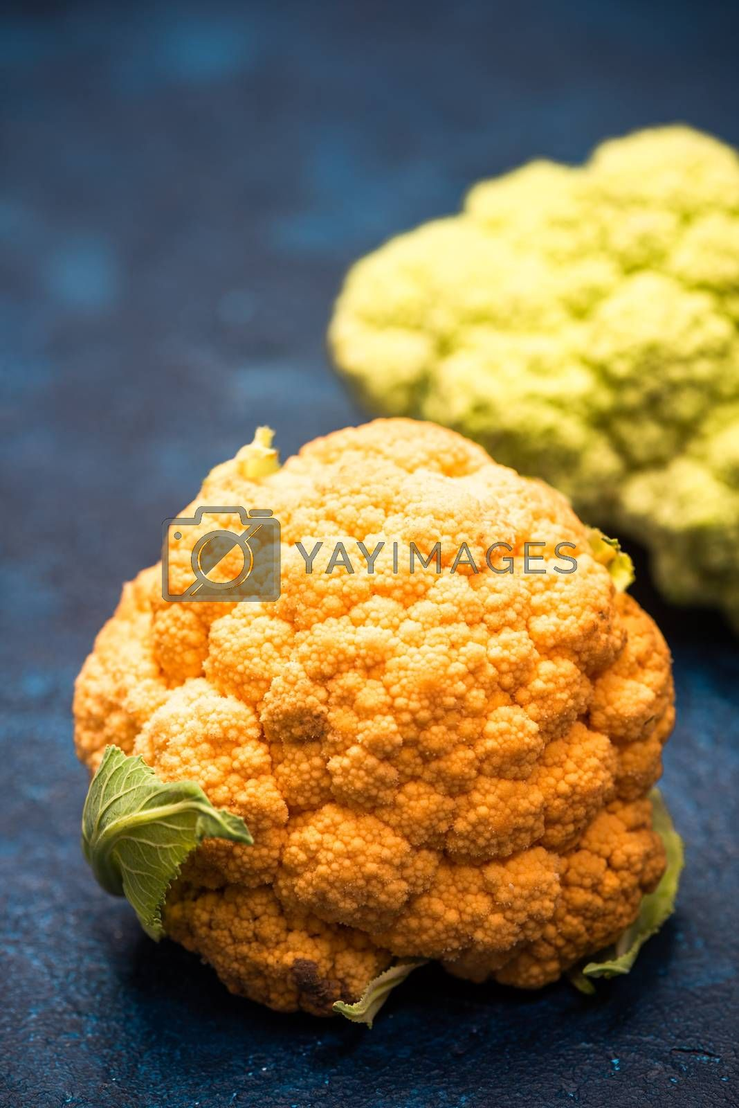 Yellow and Green Cauliflowers on Vibrant Background.