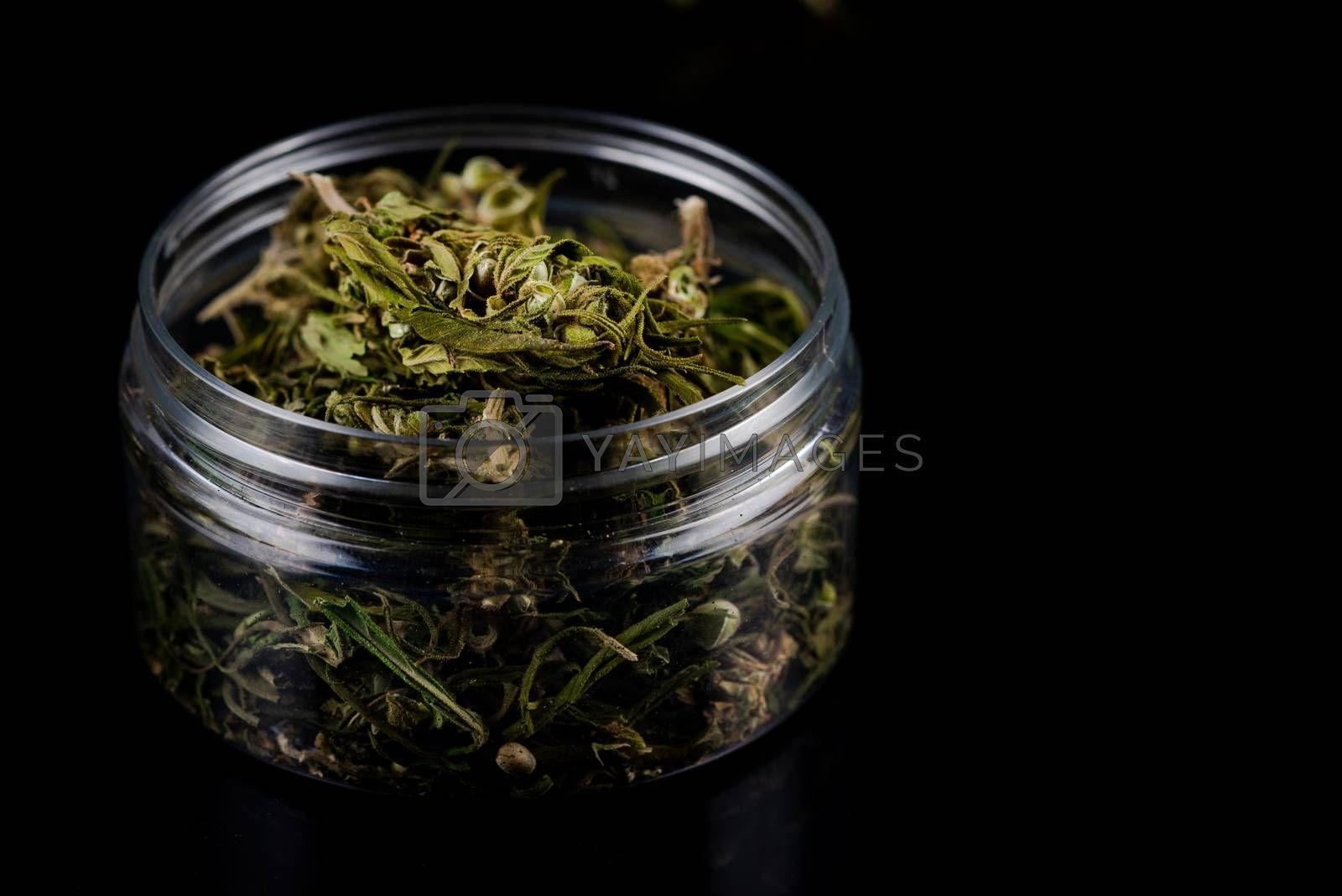 Sativa Indica or Cannabis Marijuana Flower Buds in Glass Jar. recreational Smoking Concept.