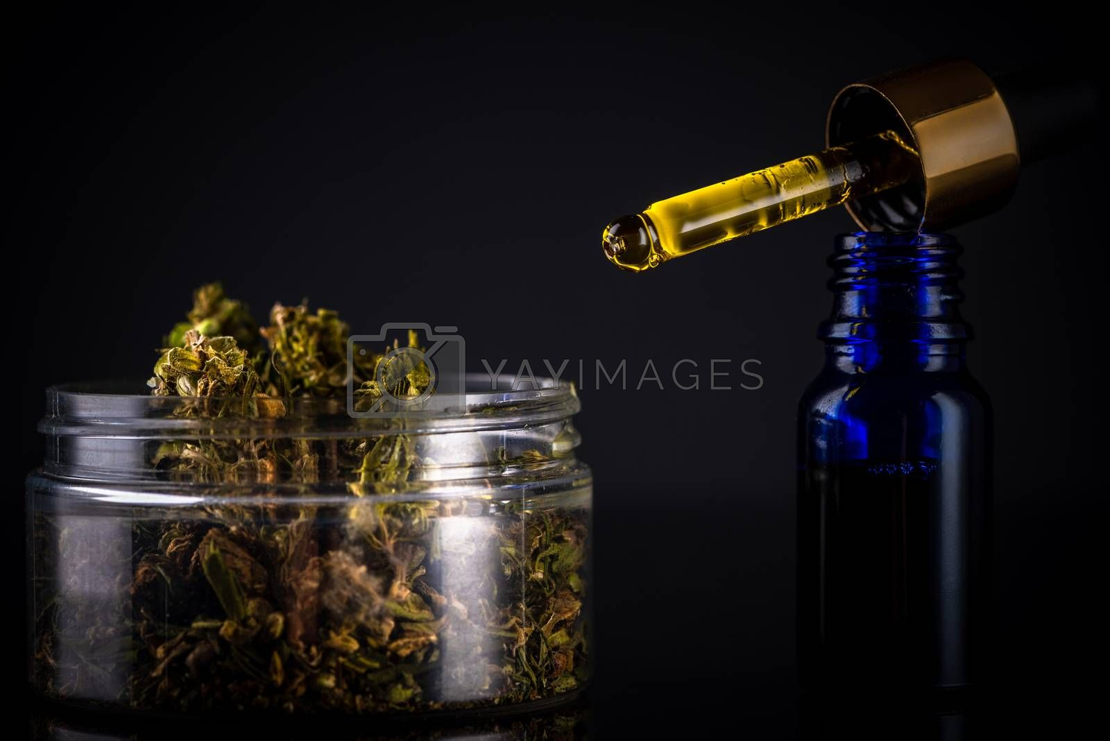 CBD Cannabidiol Oil. Cannabis MArijuana Extract for Medical Use.