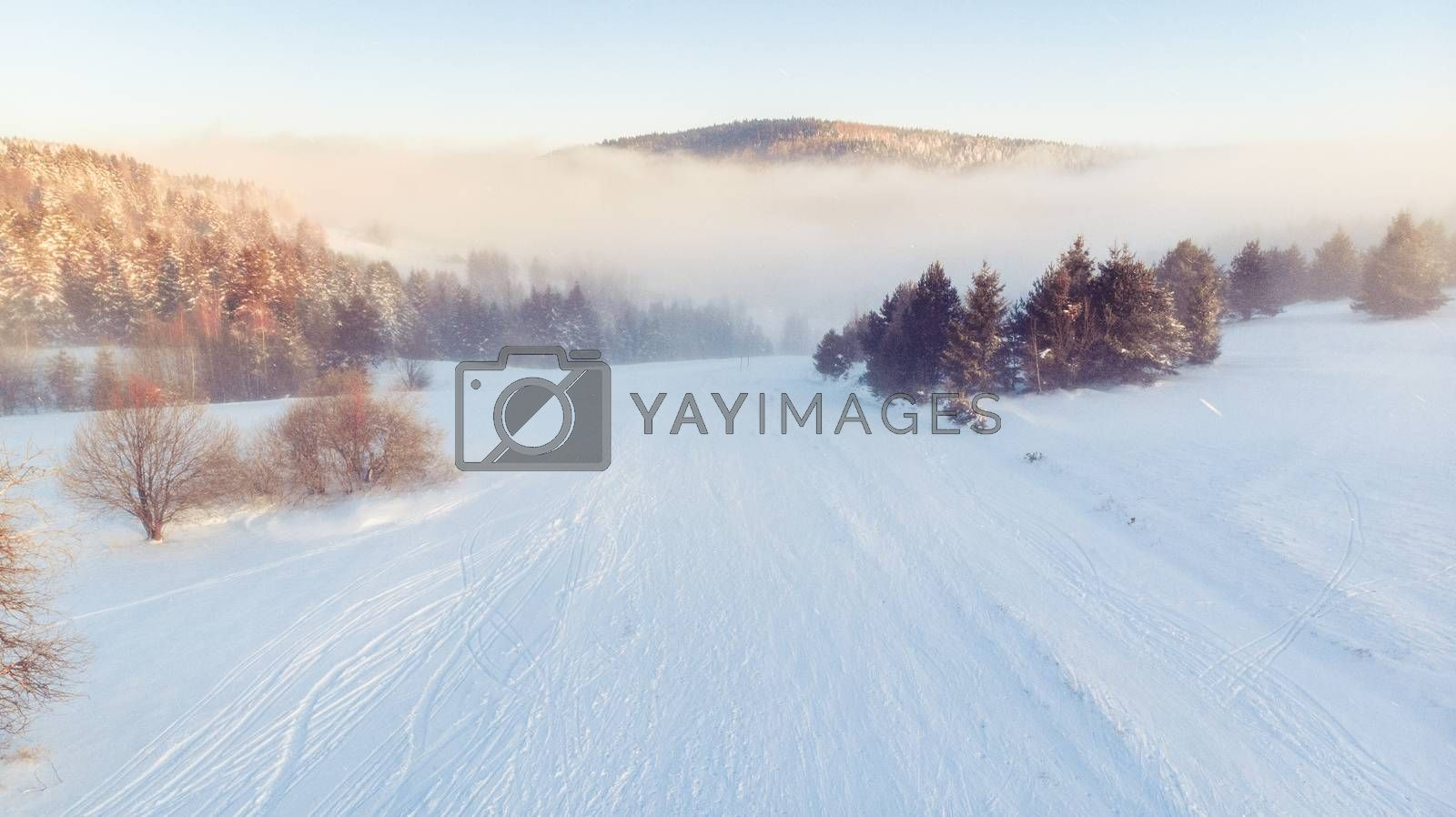 Cold Morning at Winter Season in Countryside at Sunrise.