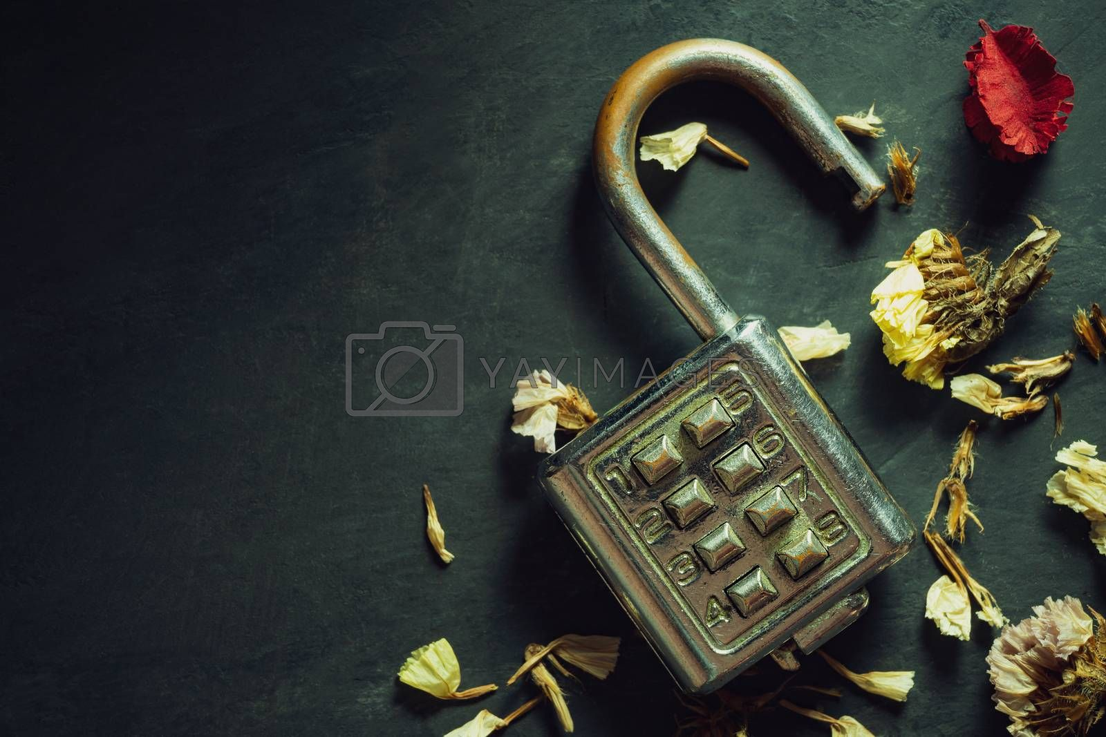 Combination padlock on blackboard background. Top view and copy space. Concept of safety and secret in vintage style.