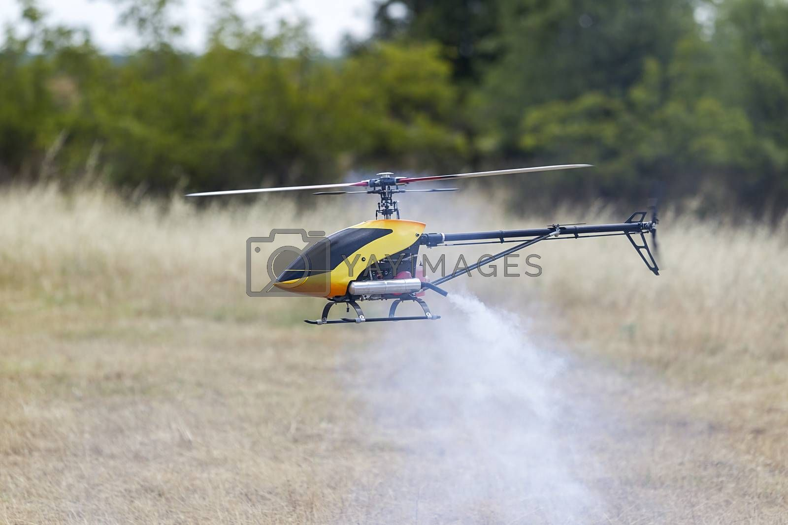 F3C aerobatic helicopter, nitro, gasoline and electric remote control model