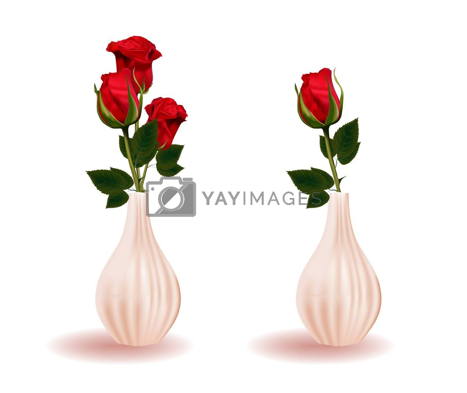 Red rose in a vase. Branch flower. Modern ceramic vase. Element Isolated On A White Background.
