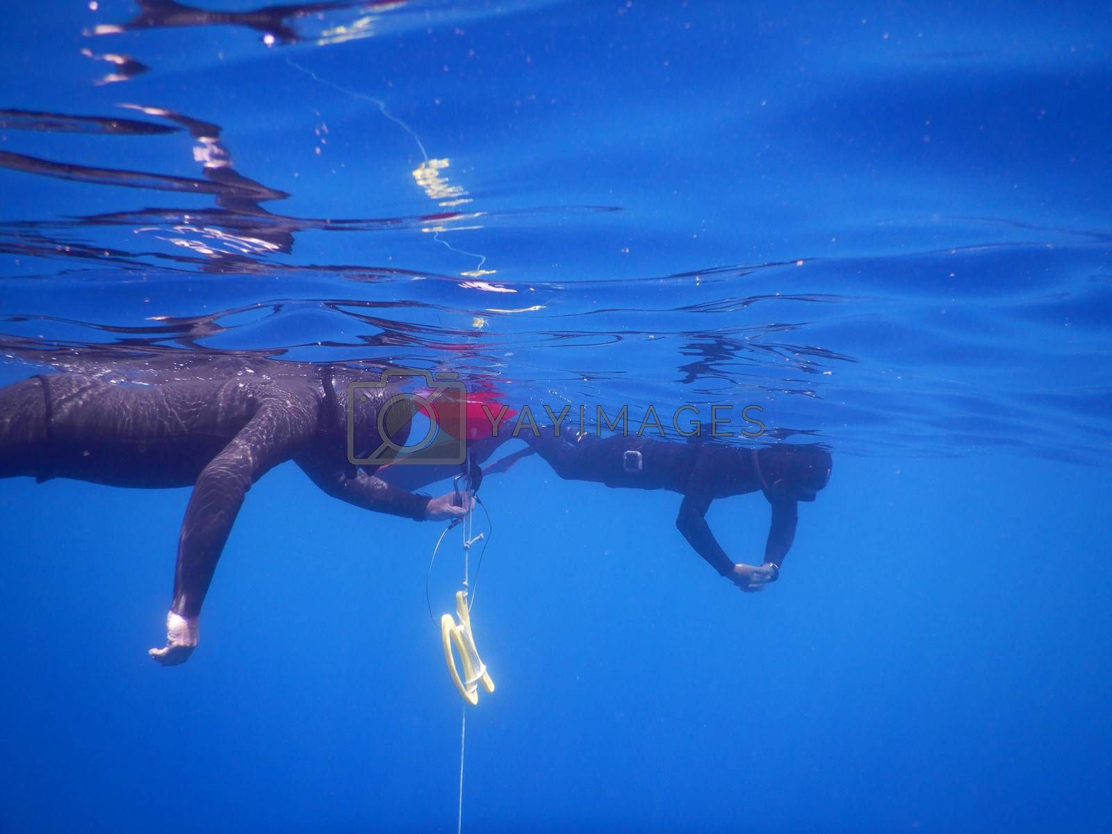 Free diving in the sea at Noli, Liguria - Italy
