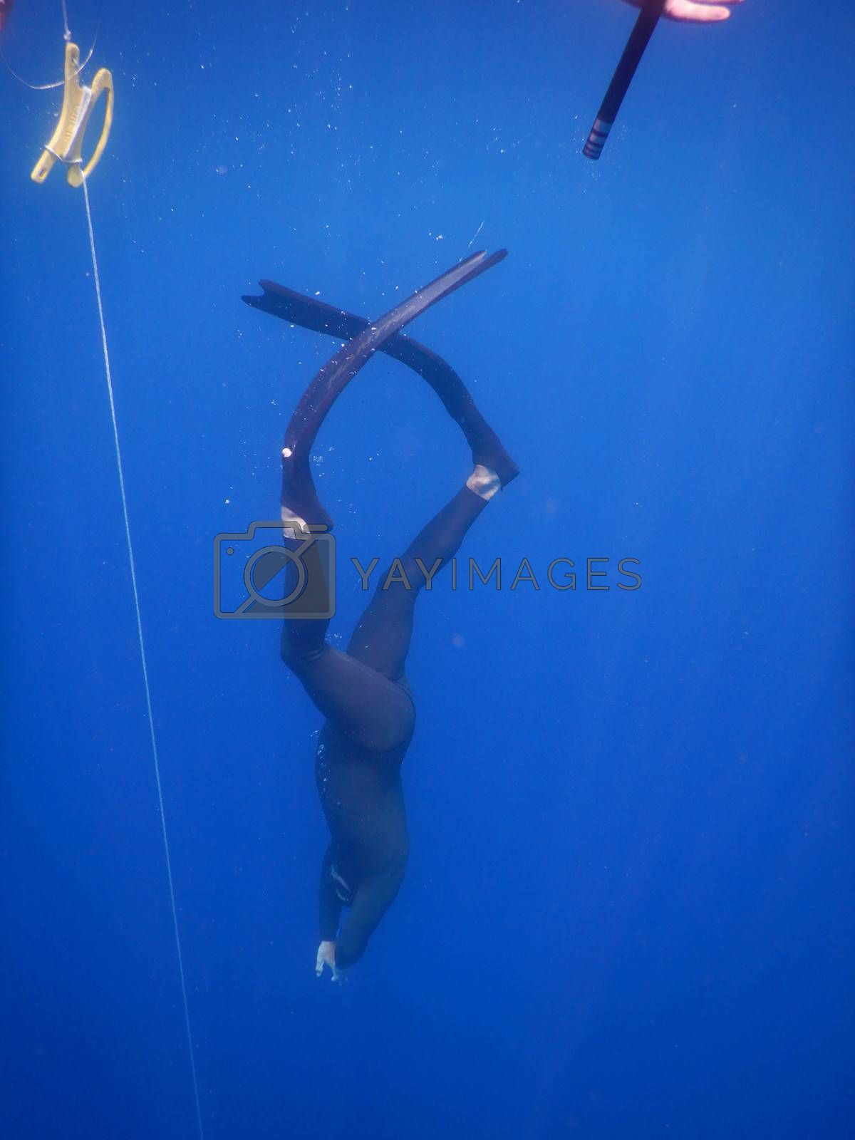 Royalty free image of Free diving along the cable by cosca