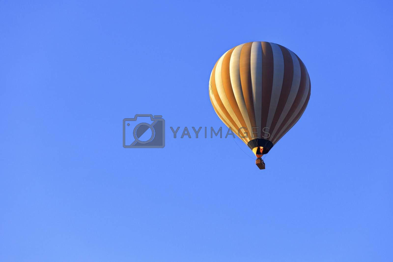 The flame of fire heats the air in a motley yellow-white beautiful balloon and raises a basket of tourists to the blue sky.