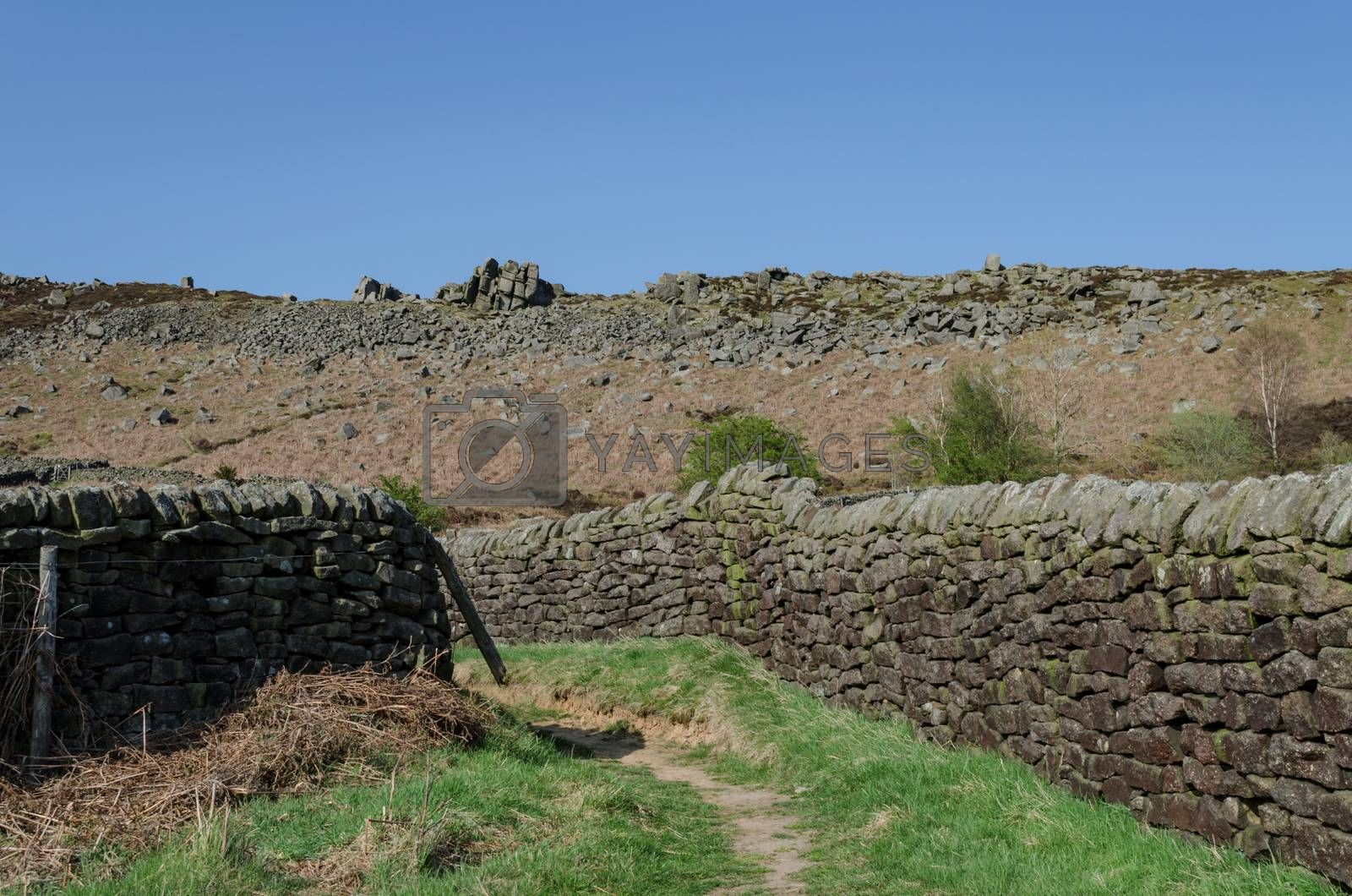A rural footpath between dry stone walls in the Peak District