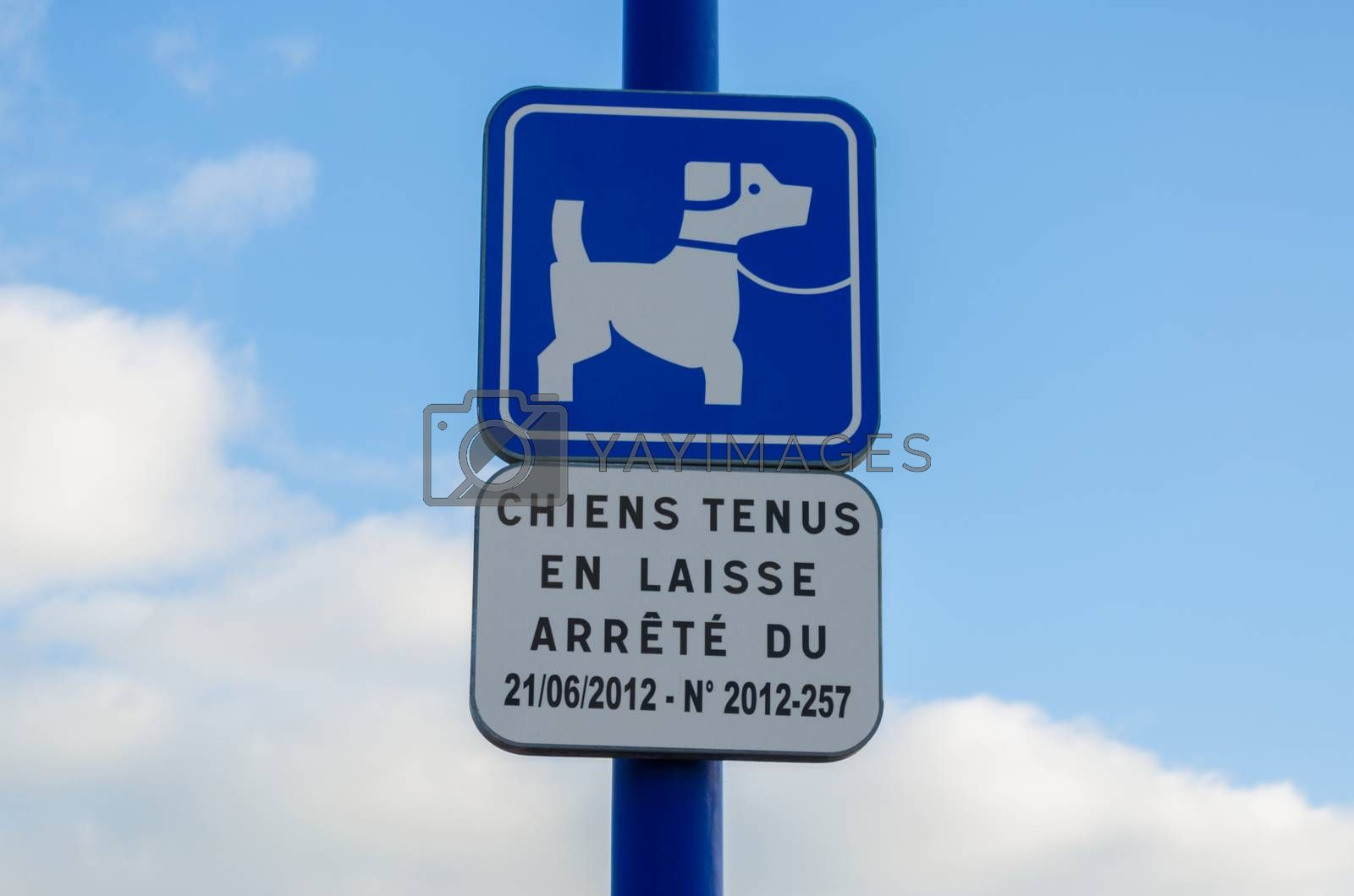 A French street sign which warns that dogs must be kept on their leads.