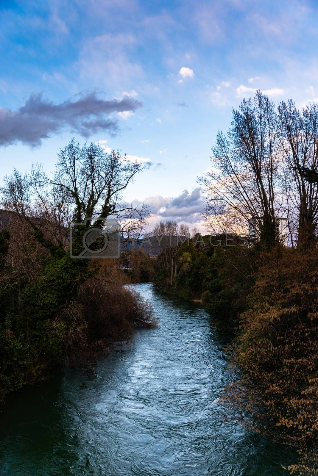 Royalty free image of BLACK RIVER by carfedeph