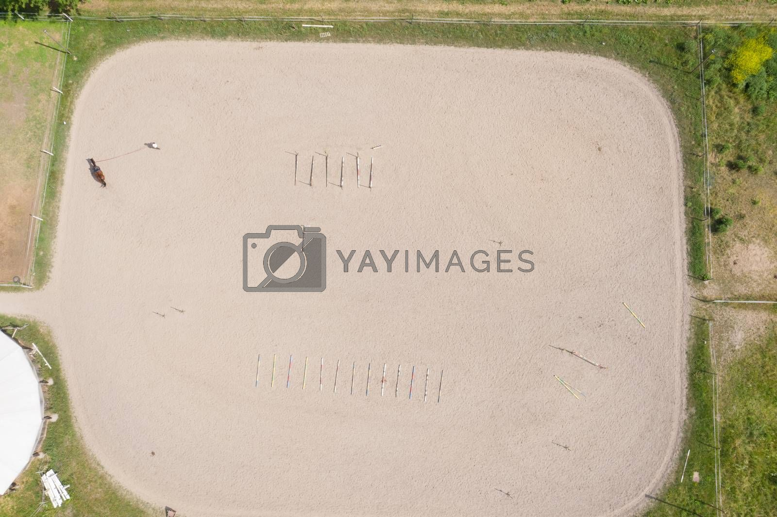 View from above, aerial video shooting, training sand field, playground, riders, jockeys ride horses, perform various exercises with horses, next to barriers. summer, outdoors