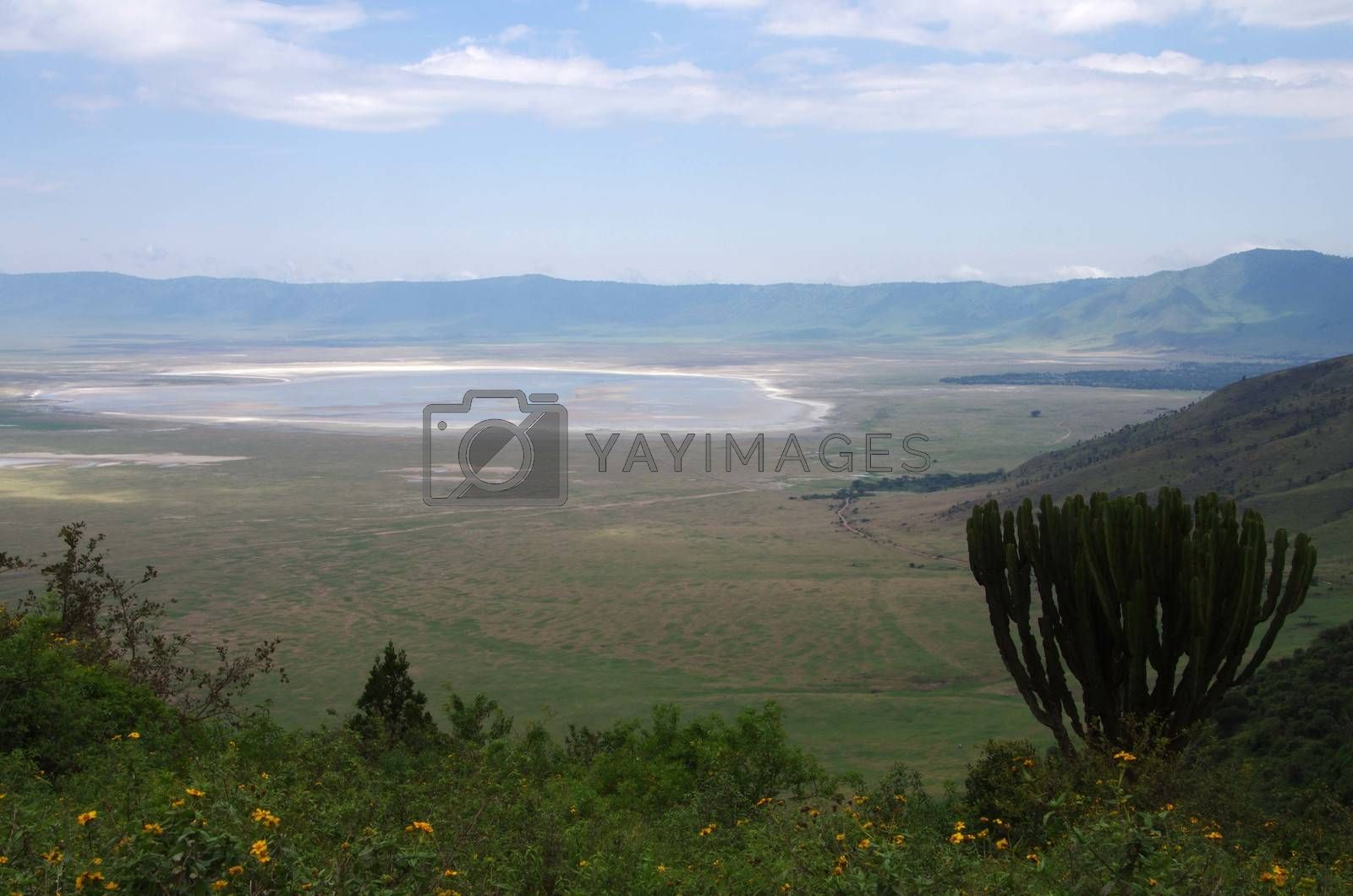 Royalty free image of The ngorongoro crater in Tanzania by pascalou95
