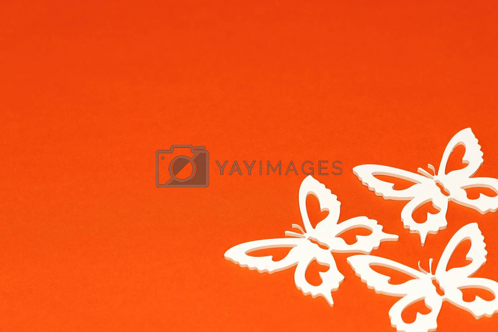 The concept of nature in spring. Minimal flatley composition, top view. White butterflies on an orange background, a creative minimal concept, copy space.